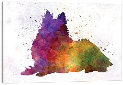 Long Haired Collie In Watercolor Canvas Art Print