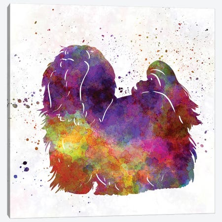 Maltese In Watercolor Canvas Print #PUR442} by Paul Rommer Canvas Wall Art