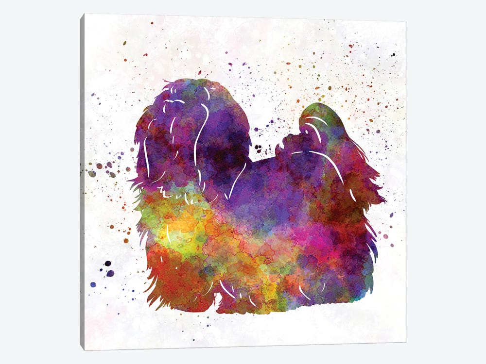 Maltese In Watercolor by Paul Rommer 1-piece Canvas Artwork