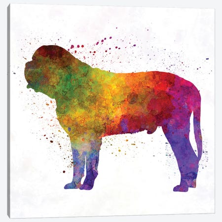 Mastiff In Watercolor Canvas Print #PUR500} by Paul Rommer Canvas Art Print
