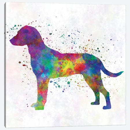 Montenegrin Mountain Hound In Watercolor Canvas Print #PUR519} by Paul Rommer Canvas Art