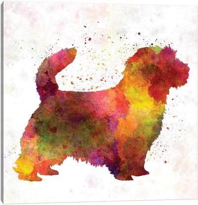 Norfolk Terrier In Watercolor Canvas Art Print