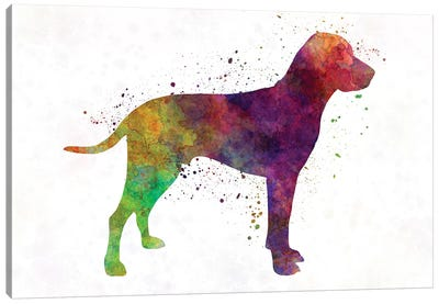 Old Danish Pointer In Watercolor Canvas Art Print