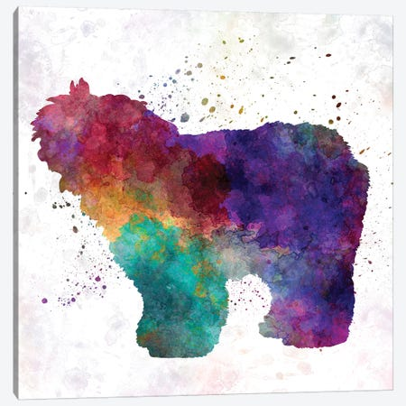 Old English Sheepdog Bobtail In Watercolor Canvas Print #PUR554} by Paul Rommer Canvas Print