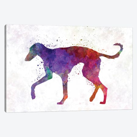 Polish Greyhound In Watercolor Canvas Print #PUR579} by Paul Rommer Canvas Art