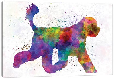 Portuguese Water Dog In Watercolor Canvas Art Print