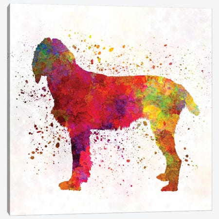 Pudelpointer In Watercolor Canvas Print #PUR594} by Paul Rommer Canvas Print