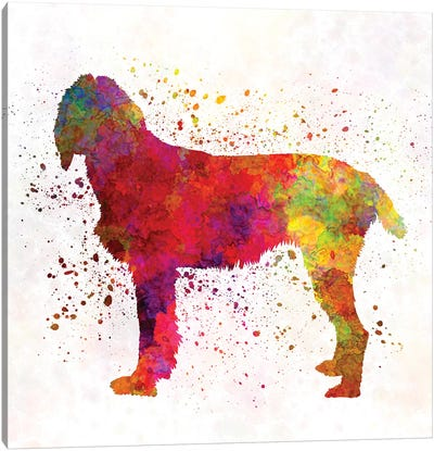 Pudelpointer In Watercolor Canvas Art Print