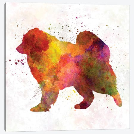 Samoyed In Watercolor Canvas Print #PUR636} by Paul Rommer Canvas Artwork