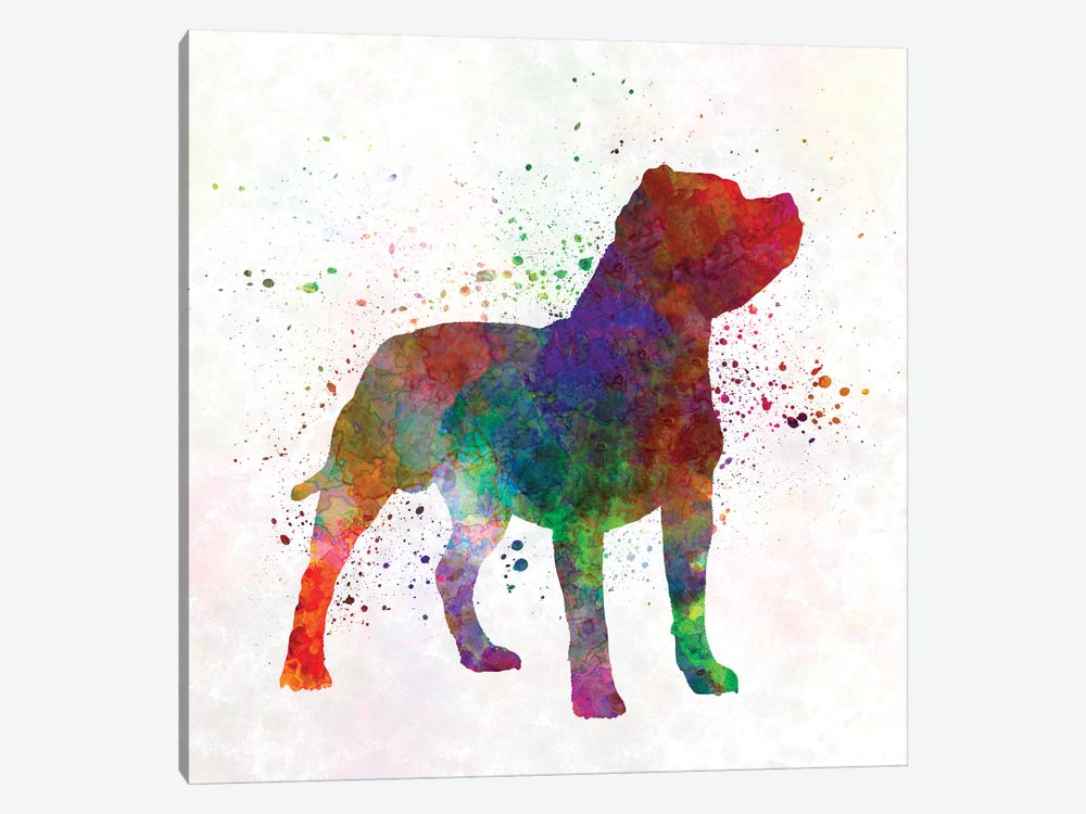 Staffordshire Bull Terrier In Watercolor by Paul Rommer 1-piece Canvas Art