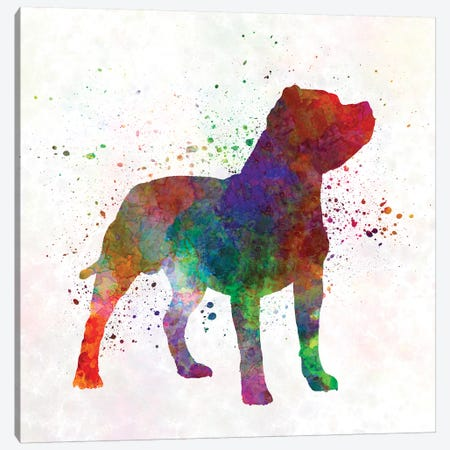 Staffordshire Bull Terrier In Watercolor Canvas Print #PUR676} by Paul Rommer Canvas Wall Art