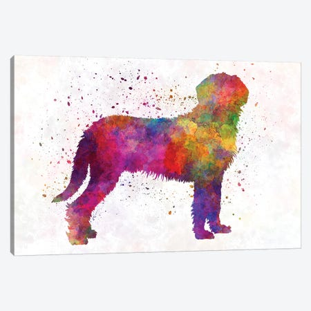 Styrian Coarsehaired Hound In Watercolor Canvas Print #PUR677} by Paul Rommer Canvas Art