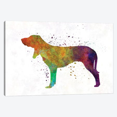 Swiss Hound In Watercolor Canvas Print #PUR689} by Paul Rommer Canvas Artwork