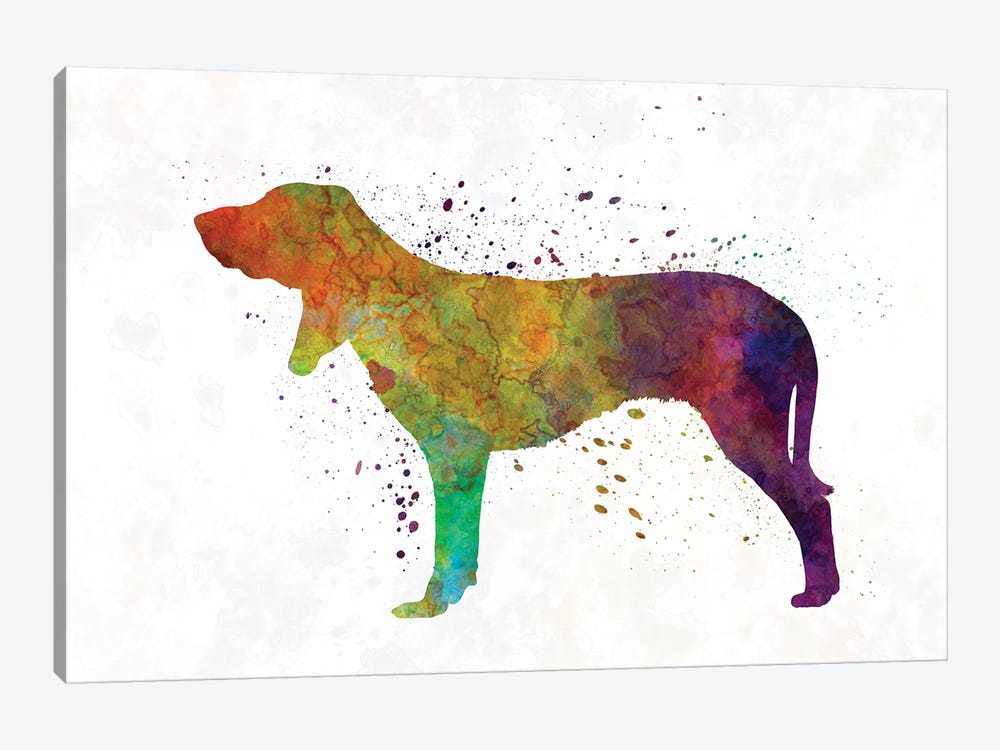 Swiss Hound In Watercolor by Paul Rommer 1-piece Canvas Art