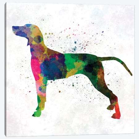 Weimaraner In Watercolor Canvas Print #PUR740} by Paul Rommer Art Print