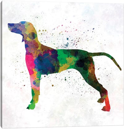 Weimaraner In Watercolor Canvas Art Print
