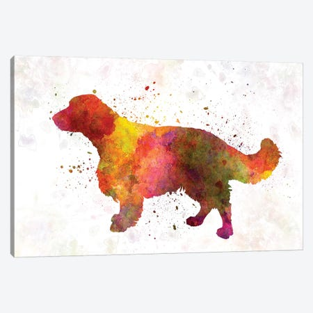 Welsh Springer Spaniel In Watercolor Canvas Print #PUR743} by Paul Rommer Canvas Art Print