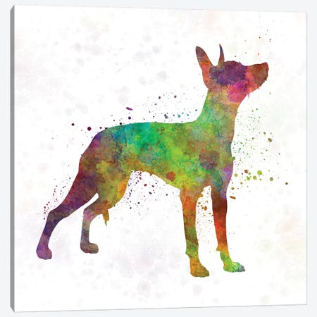 Xoloitzcuintle In Watercolor Canvas Print #PUR845} by Paul Rommer Art Print
