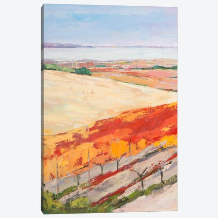 Lovely Landscape I Canvas Print #PVI1} by Pieter Vierhout Canvas Print