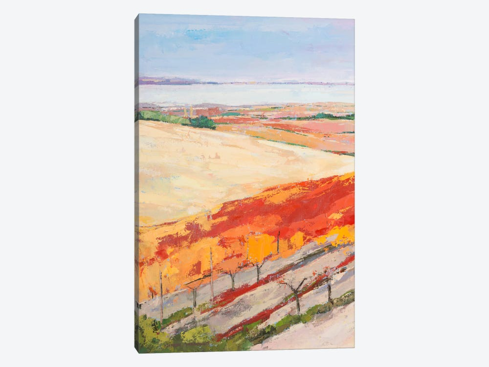 Lovely Landscape I by Pieter Vierhout 1-piece Canvas Wall Art