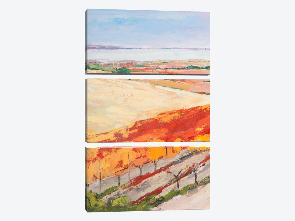 Lovely Landscape I 3-piece Canvas Artwork