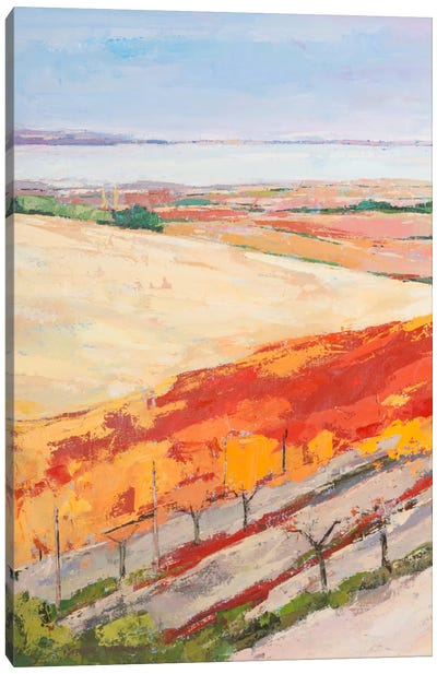 Lovely Landscape I Canvas Art Print