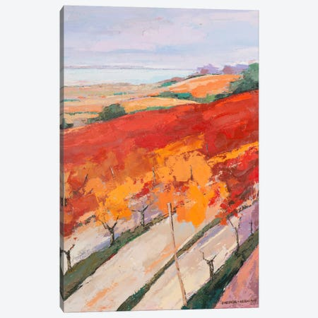 Lovely Landscape II Canvas Print #PVI2} by Pieter Vierhout Canvas Art Print