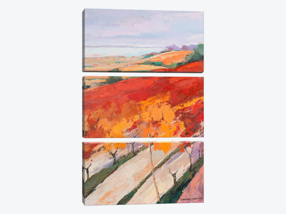 Lovely Landscape II by Pieter Vierhout 3-piece Canvas Print