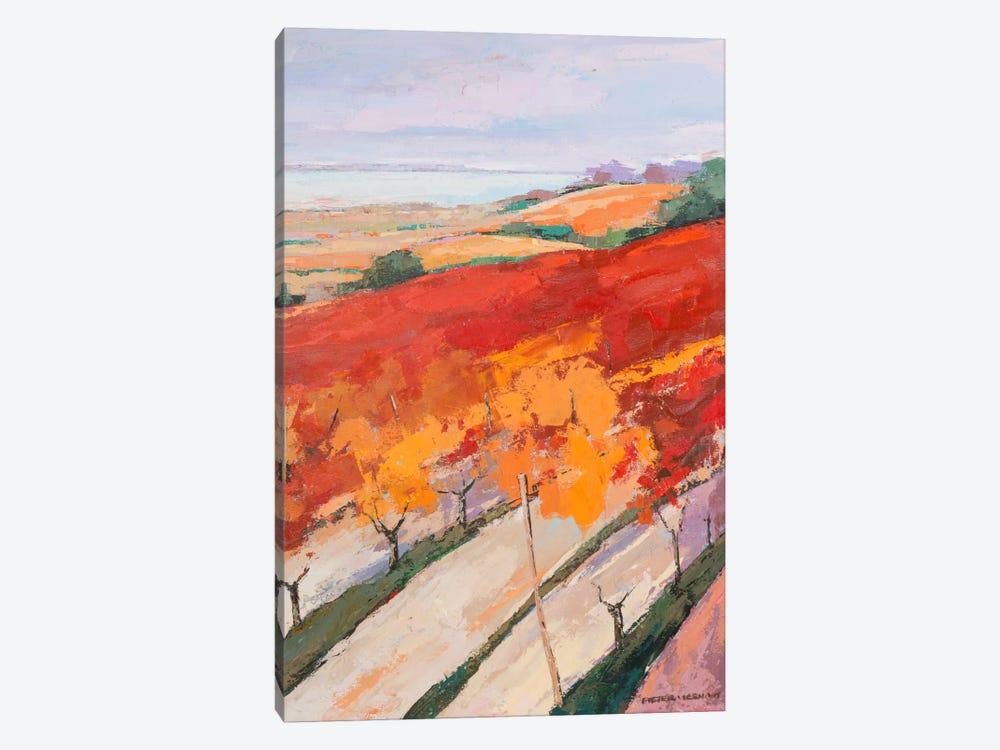 Lovely Landscape II by Pieter Vierhout 1-piece Canvas Print