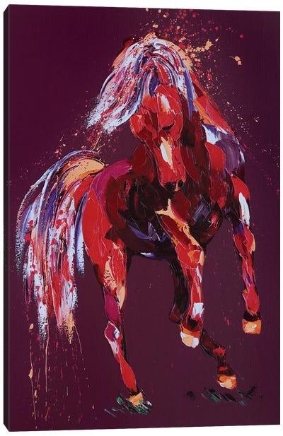 Enchantress Canvas Art Print