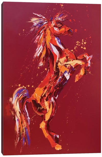Fantasia Canvas Art Print