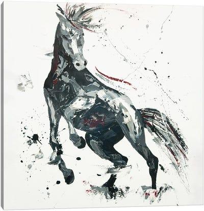 Agitato Fervour, 2014 (oil on canvas board) Canvas Art Print