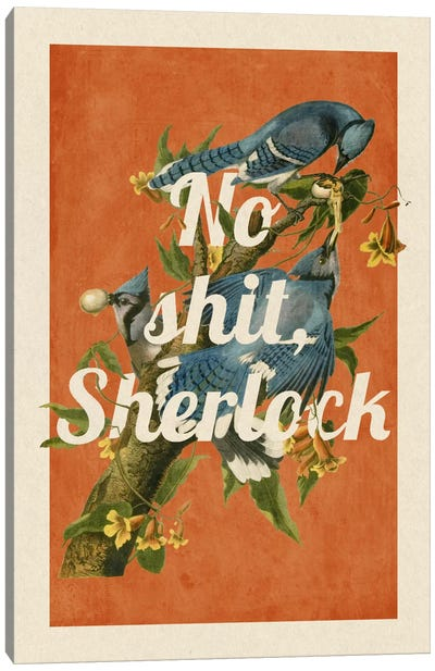 No Shit Sherlock Canvas Print #PWDS10