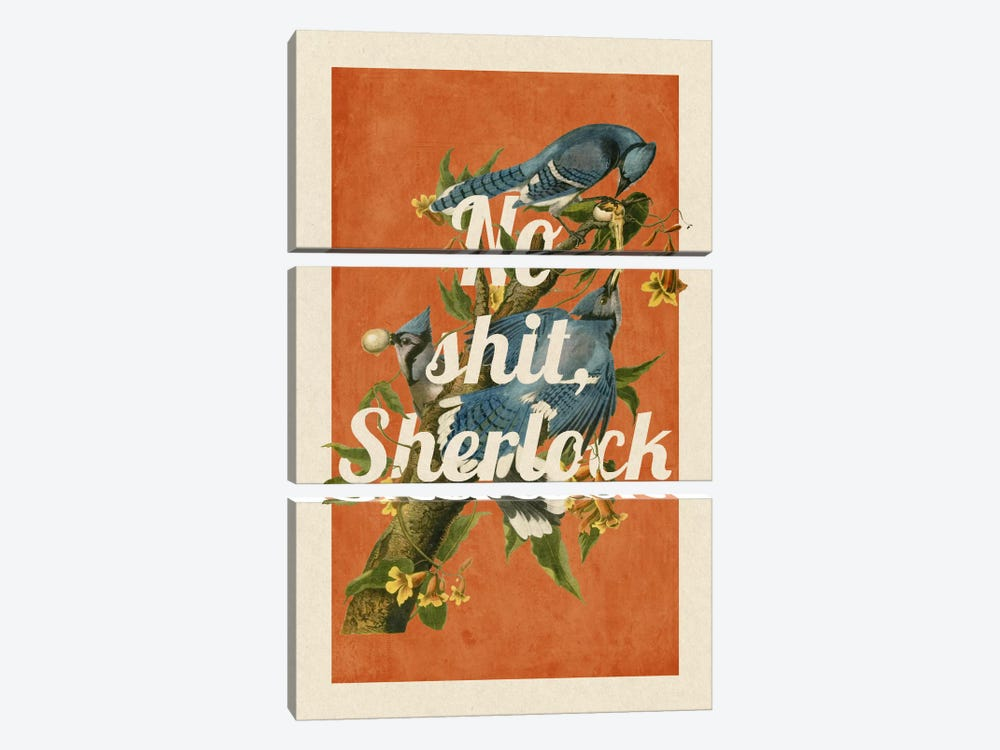No Shit Sherlock by 5by5collective 3-piece Canvas Artwork