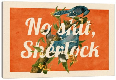 No Shit Sherlock #2 Canvas Print #PWDS11