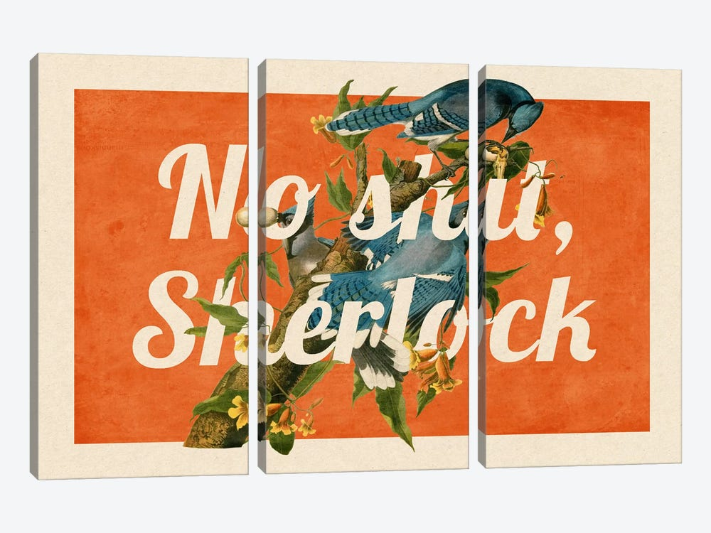 No Shit Sherlock #2 by 5by5collective 3-piece Canvas Art Print