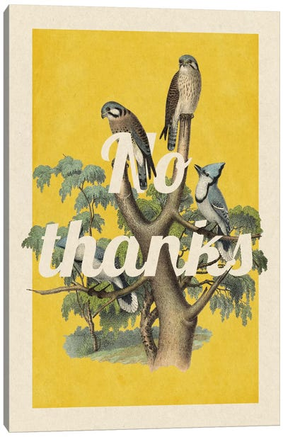 No Thanks Canvas Print #PWDS12