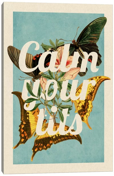 Calm Your Tits Canvas Art Print
