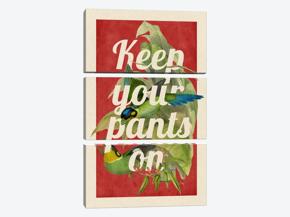 Keep Your Pants On by 5by5collective 3-piece Canvas Print