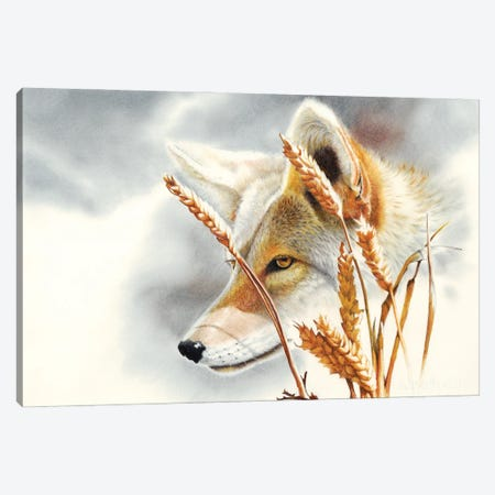 Song Dog Canvas Print #PWI102} by Peter Williams Canvas Art Print