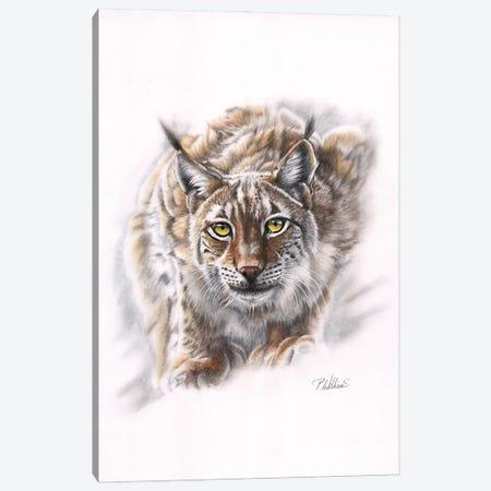 Spirit Of Siberia Canvas Print #PWI103} by Peter Williams Canvas Art Print