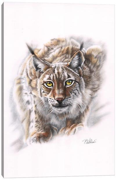Spirit Of Siberia Canvas Art Print