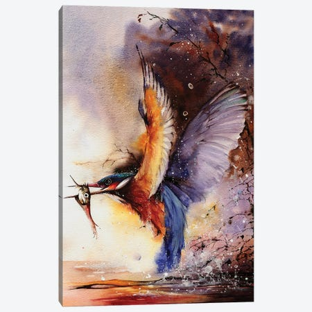 Splashes Of Colour Canvas Print #PWI105} by Peter Williams Canvas Artwork