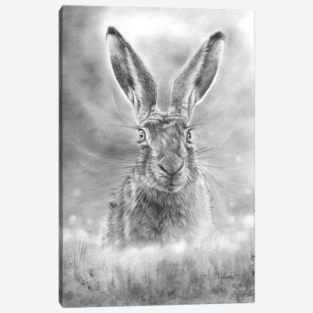 Spring Hare Canvas Print #PWI106} by Peter Williams Canvas Art