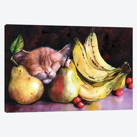 Still Life Canvas Print #PWI107} by Peter Williams Canvas Artwork