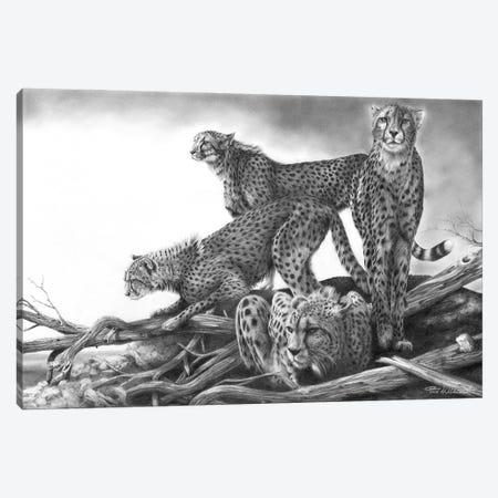 Vantage Canvas Print #PWI126} by Peter Williams Canvas Art