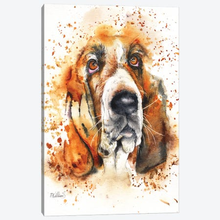 Wet Basset Canvas Print #PWI129} by Peter Williams Art Print