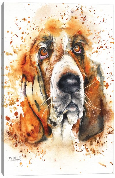 Wet Basset Canvas Art Print