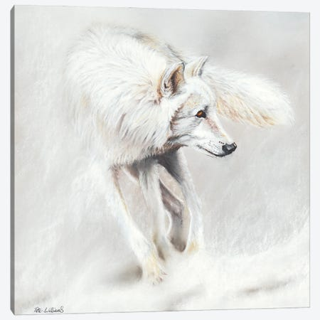 Whiteout Canvas Print #PWI130} by Peter Williams Canvas Artwork
