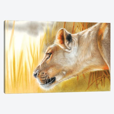 African Queen Canvas Print #PWI134} by Peter Williams Art Print
